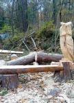 Kreative Baumfällung
